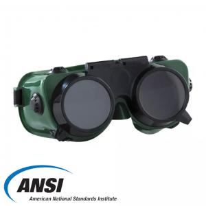 Welding Goggles GW250